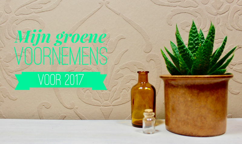 Mijn groene voornemens voor 2017