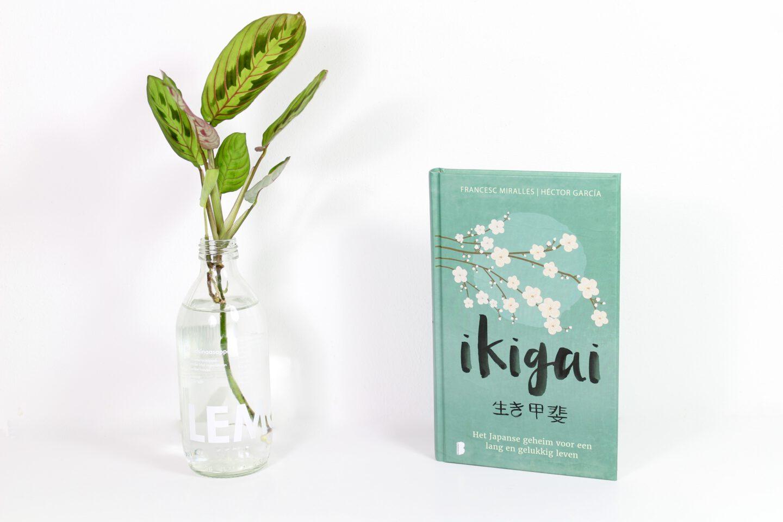 Boekrecensie | Ikigai – Het Japanse geheim voor een lang en gelukkig leven