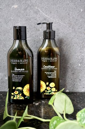 Herb and blom conditioner, herb and blom shampoo