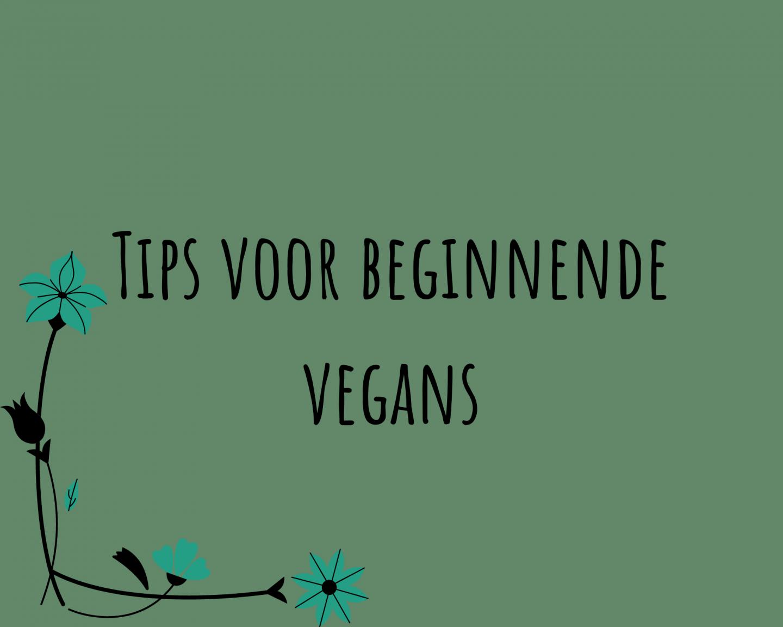 6 tips voor beginnende vegans