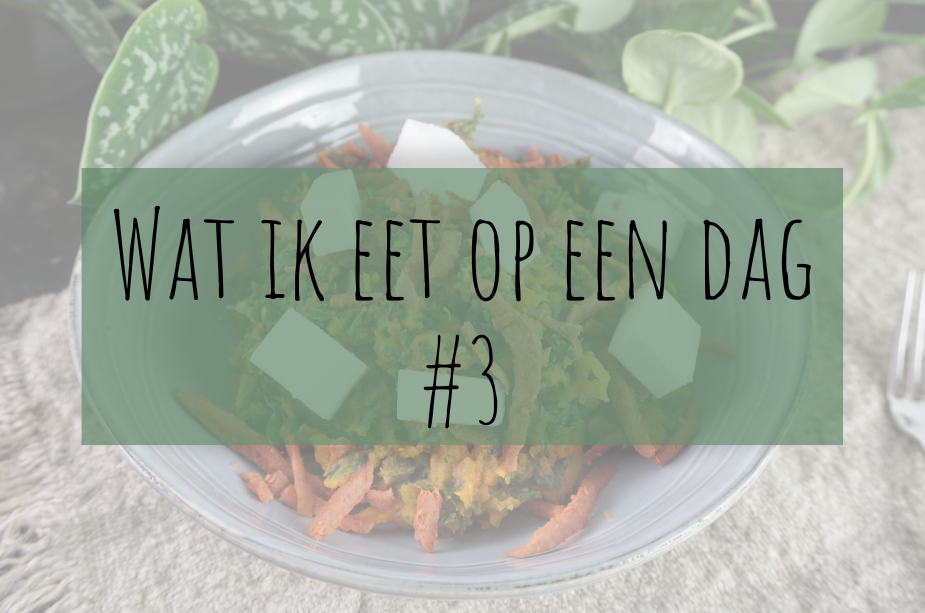 wat ik eet op een dag vegan 3
