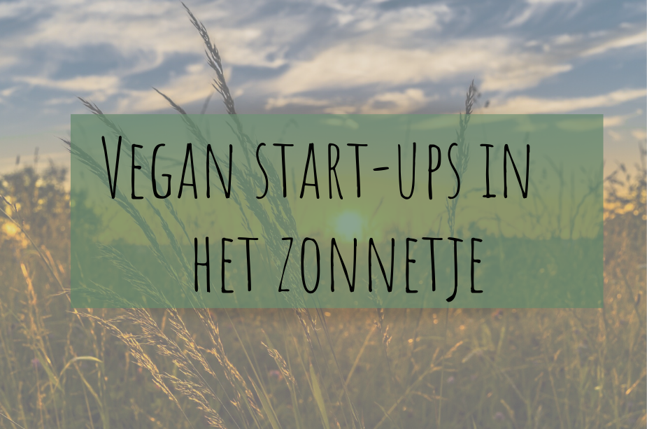 Vegan start-ups in het zonnetje | Willem-pie & Willicroft