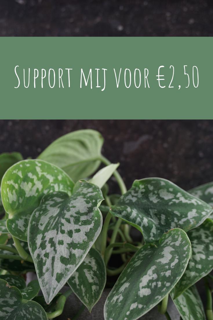 support mij
